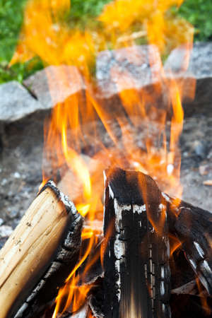 woodfire: camp fire with wood