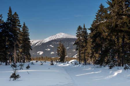 krkonose: Czech Republic - Janske lazne - Cerna hora - Snezka