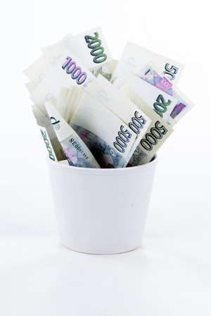 korun: Czech paper money in flowerpot on white background