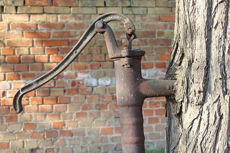 thirsting: a closeup shot of a retro water pump growing into a tree