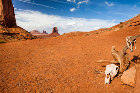 elongation: tree monument valley - desert - usa Stock Photo