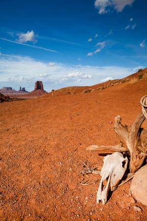 elongacion: cráneo Monumet valle - Arizona - EE.UU. Foto de archivo