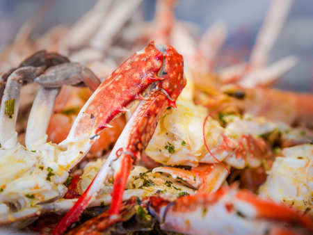 Bright orange boiled pincer or claw of a langoustine or lobster served in a dish of mixed seafood in a close up view with copy space