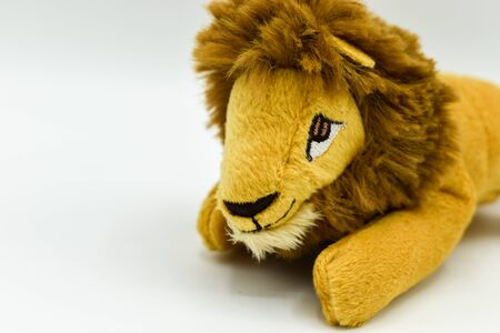 Lion stuffed toy teddy isolated on white background