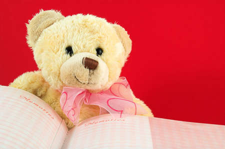 sweet teddy and memories book in red background photo