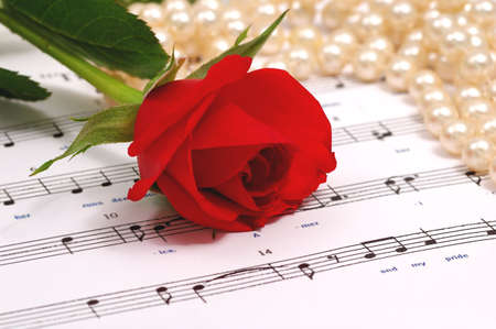 red silky rose with musical notes photo