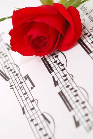 red silky rose with musical notes Stock Photo - 2020261