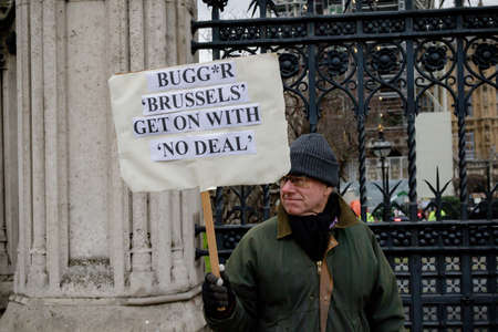 London, United Kingdom, 31st January 2019:- A Pro-Brexit protester outside the Houses of Parliament in Westminster London