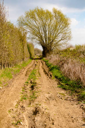 A muddy public footpath and right of way in the countryside