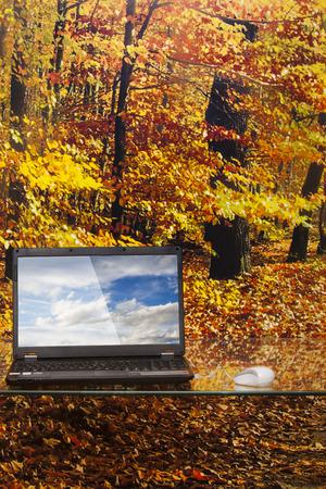 森の背景にガラス テーブルの上のノート パソコン 写真素材