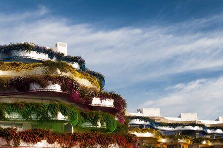 バレアレス諸島のイビサ島で花付き 写真素材