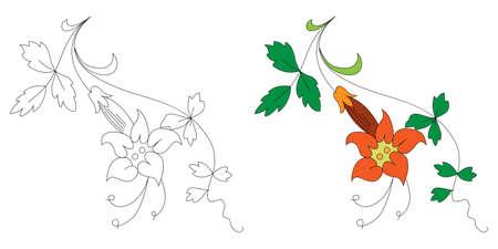 黒と白とカラーの花の飾り