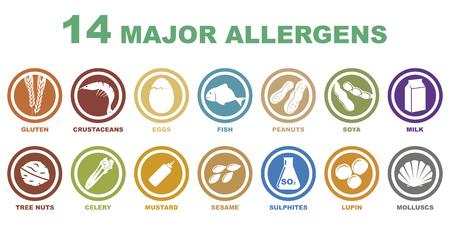 alergenos: un conjunto de 14 grandes iconos de alérgenos en el fondo blanco
