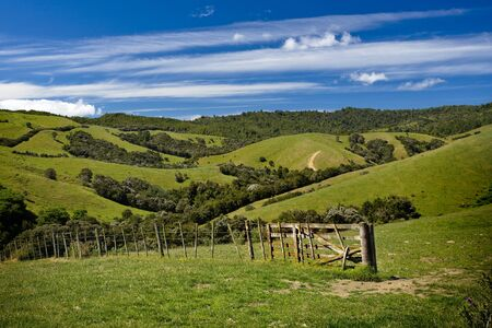 Green fields and rolling hills in New Zealand Stock Photo - 4545959