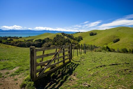 Green fields and rolling hills in New Zealand Stock Photo - 4545993