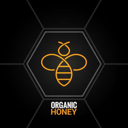 abeja: Abeja en el fondo de nido de abeja