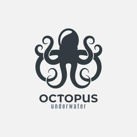 Octopus animal  design on white background