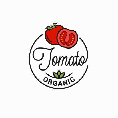 Round linear of tomato on white Illustration