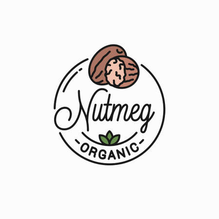 Round linear of nutmeg on white