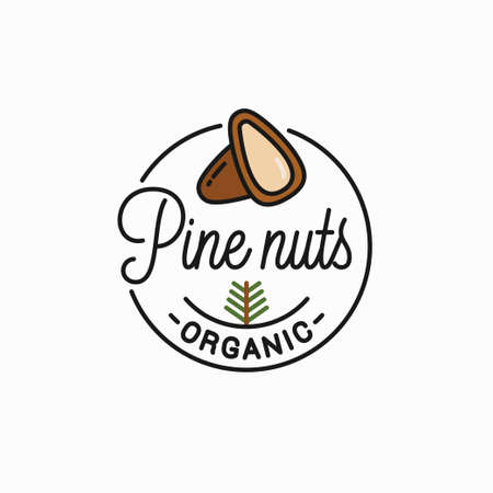 Round linear of peeled pine nuts on white Illustration