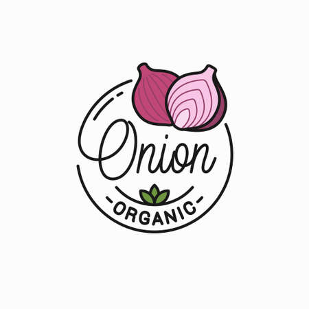 Onion vegetable  Round linear of red onion Illustration
