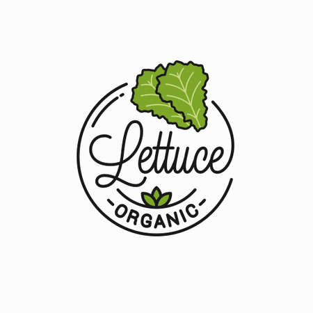 Lettuce vegetable symbol. Round linear of lettuce