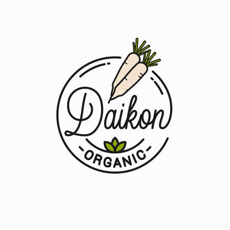 Daikon radishes . Round linear of daikons Illustration
