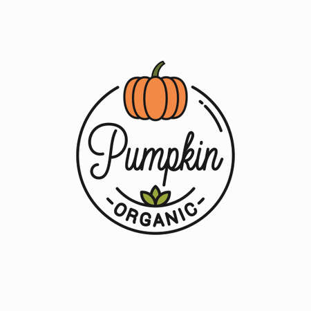 Pumpkin vegetable . Round linear on background Illustration