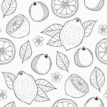Citrus seamless pattern Illustration