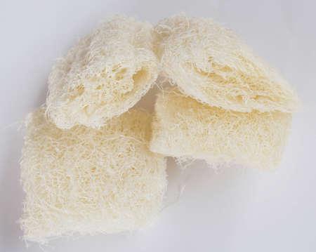 Natural sponge on white background photo