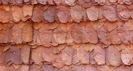 ton: Brown leaf wall background, Ton Tueng wall background.