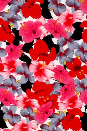 Hawaiian hibiscus fond tissu Banque d'images - 47868690