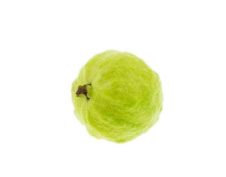 Guava fruit has green skin and white flesh, vitamin C.
