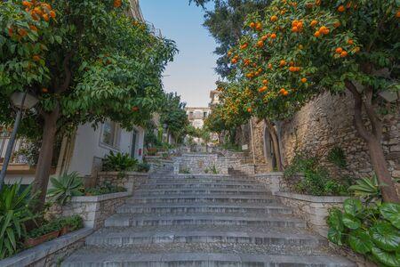 taormina: Orange trees in Taormina, Sicily, Italy