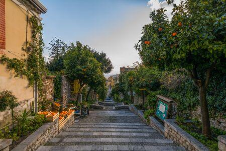 taormina: Orange trees in taormina,Sicily, Italy
