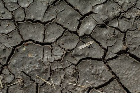 waterless: Long waterless dirt completely dried out, texture, background Stock Photo