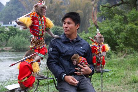 apes: Guilin , China - April 6, 2011: man working with apes in costume to amuse tourists at Jangshuo river China