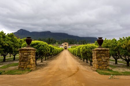 Stellenbosch wine region close to Cape Town in South Africa