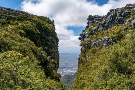 View of top of Table Mountain ins Cape Town in South Africa