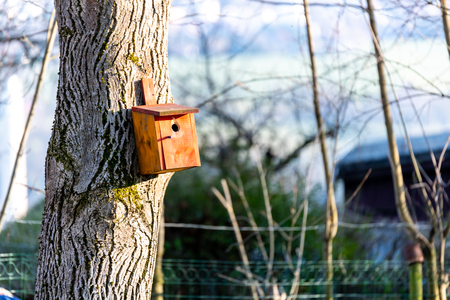 Birdhousing in brown hanging on a tree in the early spring Stock fotó