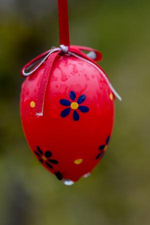 Easter eggs arranged for decoration outside the house Reklamní fotografie - 107712318