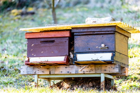 beehive outside on a madow Stock fotó
