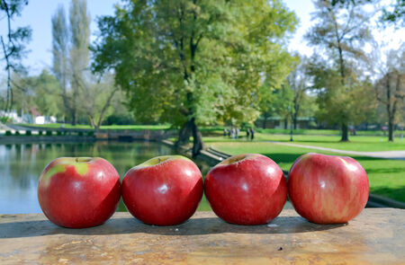 horizontal position: Four apples in horizontal position in the orchard