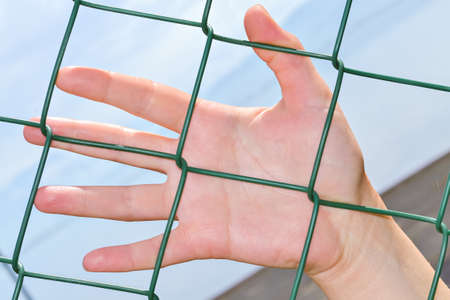uphold: Closeup of an uphold hand of a woman on a wire fence