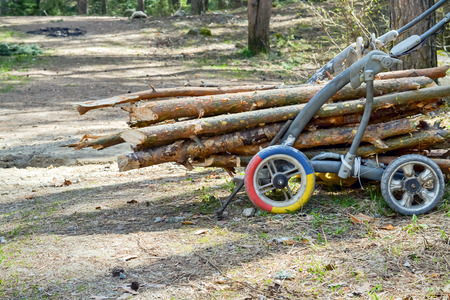 illegally: Bunch of illegally cut wood in small wagon
