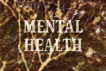 enfermedades mentales: Texto sobre el tema del estr�s y el riesgo de trastornos mentales modernos