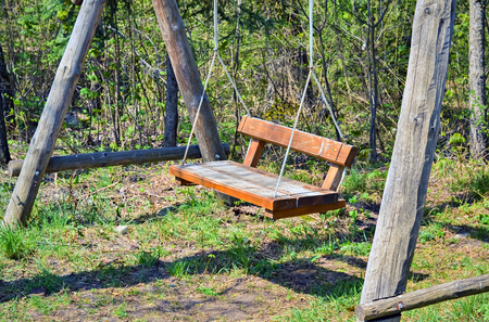 teeter: Handmade wooden hanging swing in the nature near the forest