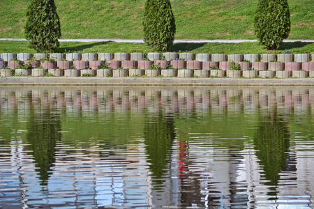 reflecting: Three coniferous trees reflecting in water in the city park