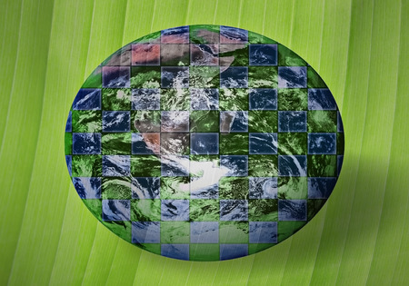protect globe: Green globe on green background as an appeal to protect the nature Stock Photo