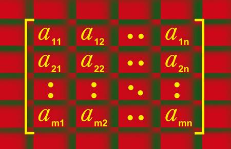 general: Illustration showing the general matrix form in linear algebra